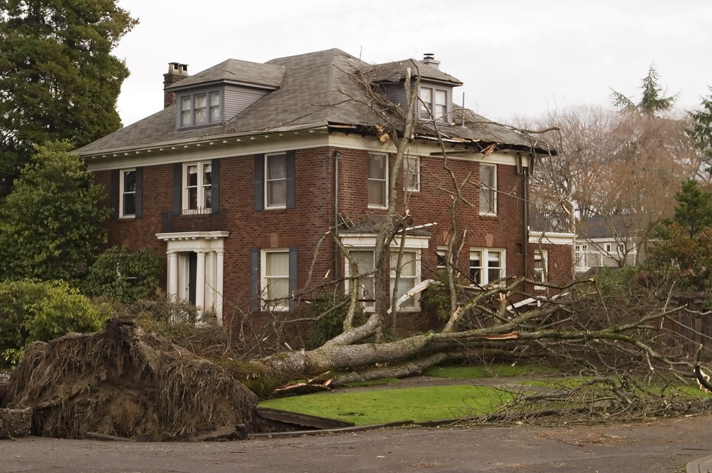 Greenville house after windstorm and tree damage