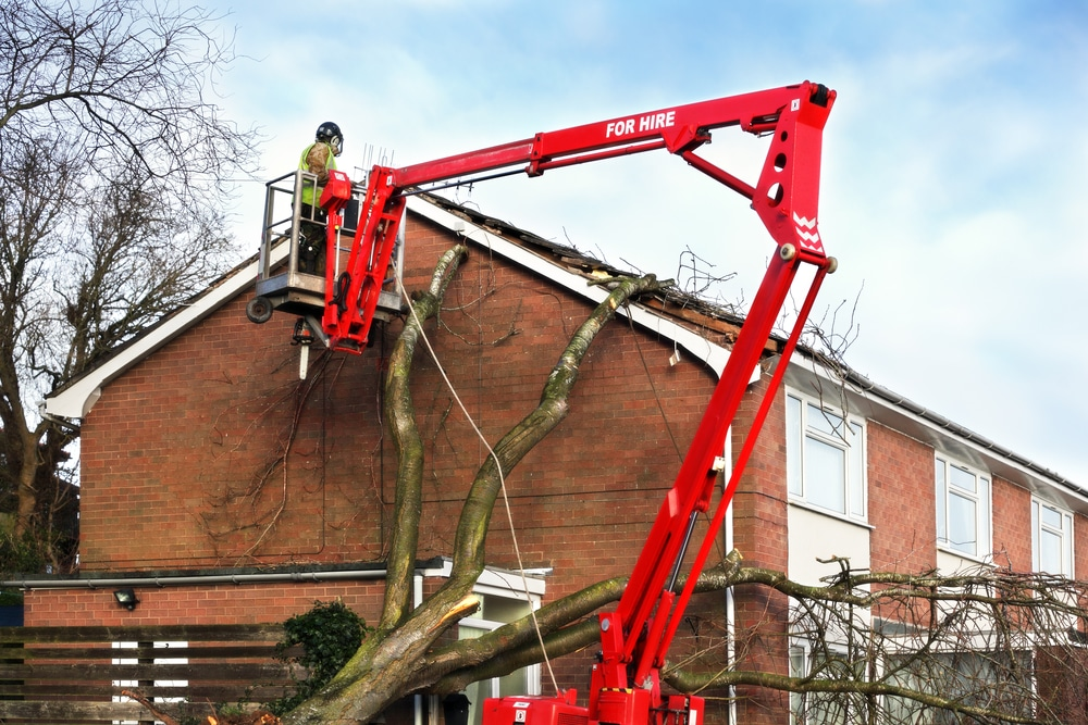 tree masters on cherry picker after storm damage